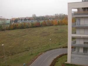 Вид из окна на стадион